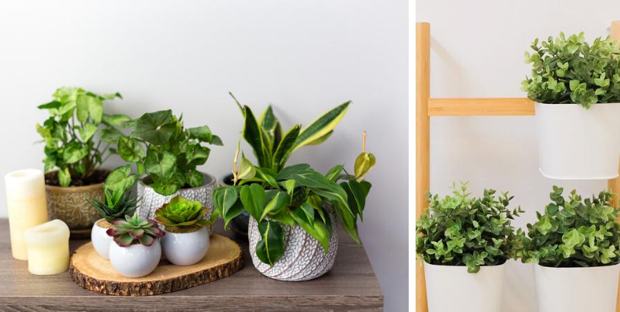 Kunst bloemen en planten Tuincentrum de Carlton